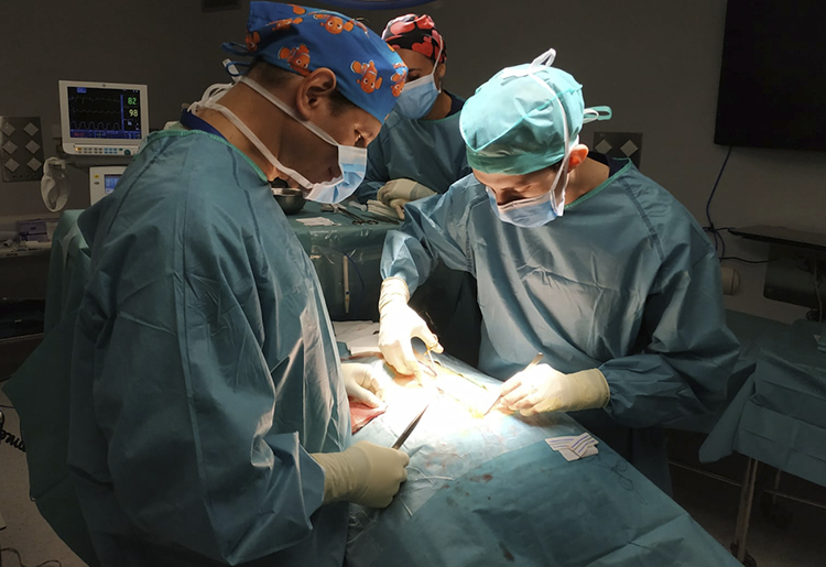 El Dr. Rafael Rolón se incorpora al programa Fellowship de neurocirugía